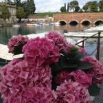 """Selezione delle foto di Maggio 2015 postate nel gruppo facebook """"noi amiamo il Lago di Garda"""""""
