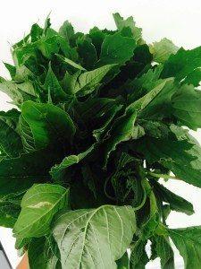 Ricetta per Crespelle con spinaci selvatici