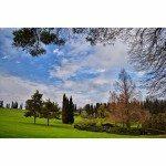 La primavera alle porte: la selezione di Igers Verona per marzo 2016