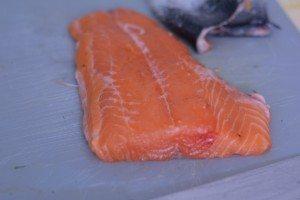 Rigatoni risottati al salmone e finocchietto