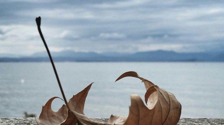 L'autunno sul Lago: la selezione di Instagramers Verona per ottobre