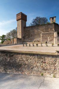 Volta Mantovana, custode della tradizione.