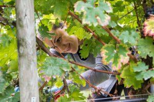 WinenBike Experience - una giornata pedalando alla scoperta del Lugana doc