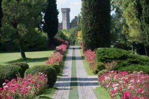 Cicloturismo sul Lago di Garda: vivere nuove esperienze in bicicletta dimenticandosi l'orologio