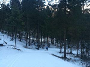 Lo sci di fondo tra i boschi della Valle di Ledro