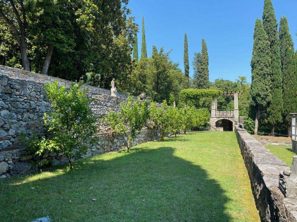 Le limonaie del Lago di Garda e il Cedro di Salò.
